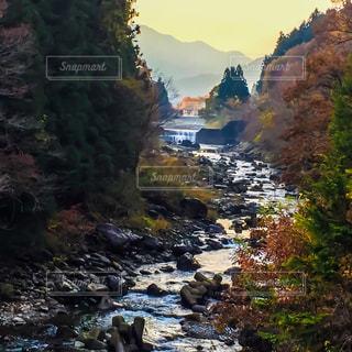 秋の写真・画像素材[680272]