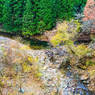 秋の写真・画像素材[680308]