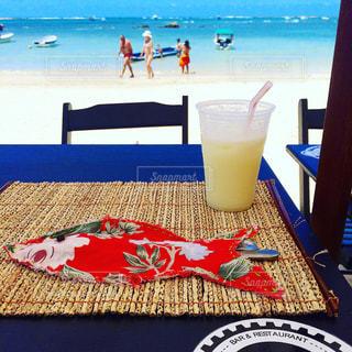 Seaside in Brazil - No.894071