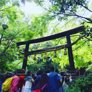 京都の写真・画像素材[686817]