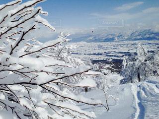 雪 雪山 スノーボード スキー 冬休み 冬 新雪 初雪 ラッセル リゾートの写真・画像素材[681988]