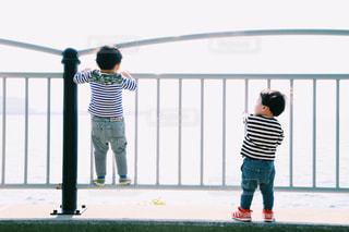 フェンスの横の兄弟の写真・画像素材[800725]