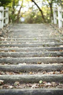 山道への階段の写真・画像素材[851243]