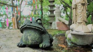 如意輪寺かえる寺の写真・画像素材[775047]