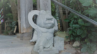 如意輪寺かえる寺の写真・画像素材[775053]