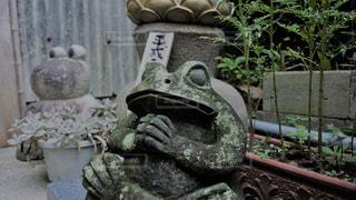 如意輪寺かえる寺の写真・画像素材[775055]