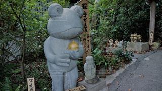 如意輪寺かえる寺の写真・画像素材[775057]