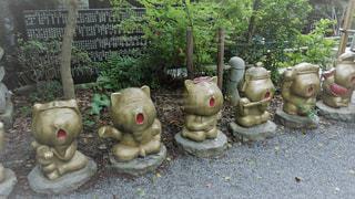 如意輪寺かえる寺の写真・画像素材[775063]