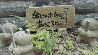 如意輪寺かえる寺の写真・画像素材[775066]