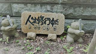 如意輪寺かえる寺の写真・画像素材[775069]