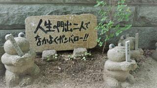 如意輪寺かえる寺の写真・画像素材[775072]