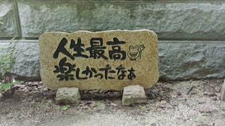 如意輪寺かえる寺の写真・画像素材[775074]