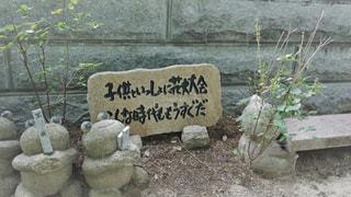 如意輪寺かえる寺の写真・画像素材[775077]