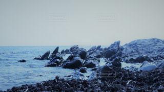 海辺の写真・画像素材[775088]