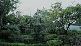 平戸城の写真・画像素材[775110]