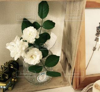 花の写真・画像素材[679784]