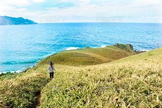 奄美大島で探検。ササントというところをゴープロ持ってハイク。の写真・画像素材[991900]