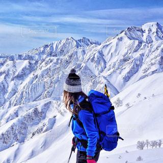 雪に覆われた白馬の上に立っての写真・画像素材[991902]