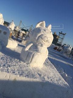雪の写真・画像素材[683149]