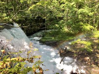 虹のかかる滝の写真・画像素材[793904]