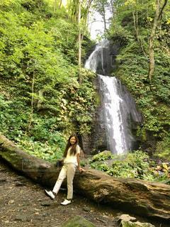 森の中の滝の写真・画像素材[793905]
