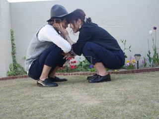 花の写真・画像素材[682469]