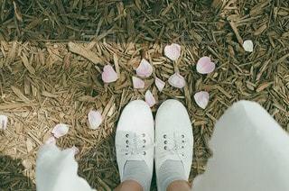 靴 - No.48032
