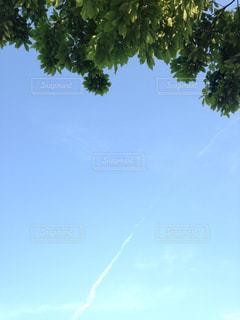 空の写真・画像素材[685611]