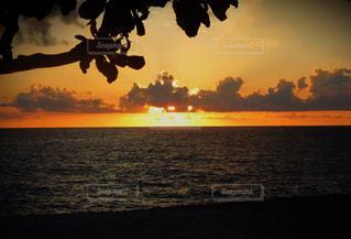 海の写真・画像素材[685318]