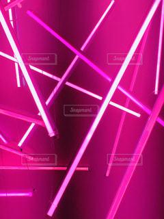 紫光の写真・画像素材[1702829]