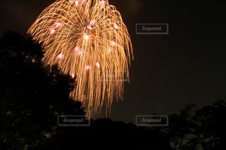 花火大会の写真・画像素材[703962]