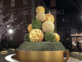 珍しい形のクリスマスツリーの写真・画像素材[3949753]
