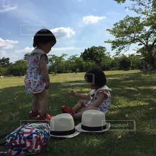 夏の写真・画像素材[687158]