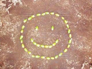 Smile - No.718257