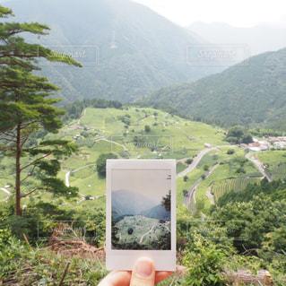 自然の写真・画像素材[688867]