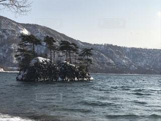 雪の写真・画像素材[688996]