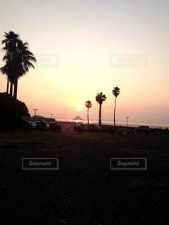 夕日の写真・画像素材[703193]