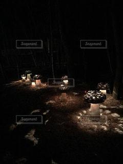 キノコの照明の写真・画像素材[1139861]