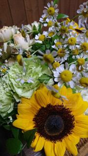 花の写真・画像素材[689507]