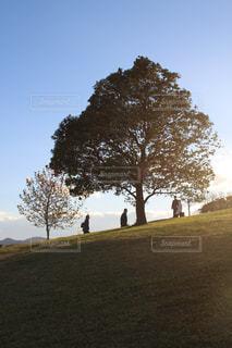 背景の木と芝生のフィールドに立っている人のグループの写真・画像素材[848452]