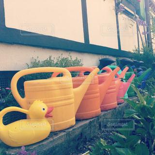 庭の写真・画像素材[690325]