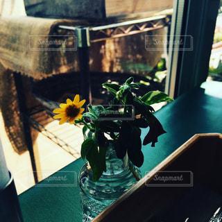 カフェの写真・画像素材[690331]