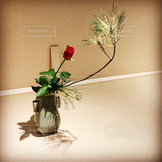 花の写真・画像素材[691154]