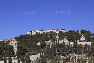 マグダラのマリア教会とオリーブ山の写真・画像素材[710416]