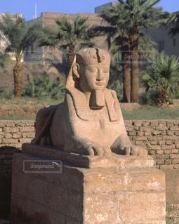 ルクソール神殿の参道のスフィンクスの写真・画像素材[728109]