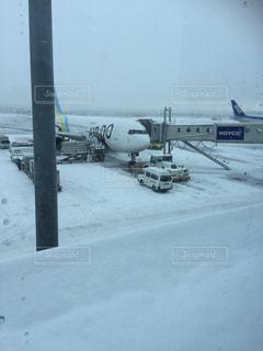 雪の写真・画像素材[691684]