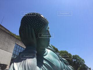 南蔵院の涅槃像の写真・画像素材[691909]