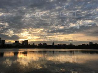 大濠公園の夕暮れの写真・画像素材[816818]