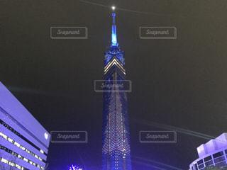 福岡タワーのイルミネーションの写真・画像素材[880147]