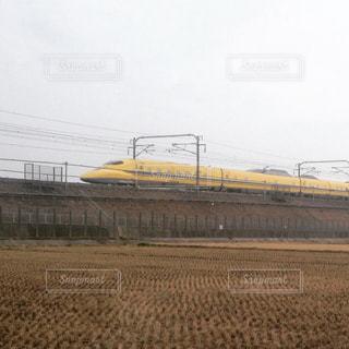 黄色の写真・画像素材[692105]
